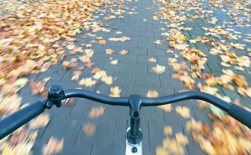 Rondje van 60km rond Amsterdam fietsen op mijn Vanmoof singlespeed